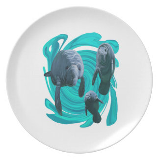 TO SHOW LOVE PLATE