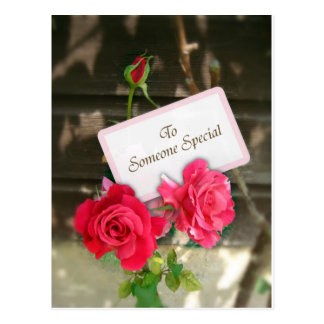 To Someone Special - Roses Postcard