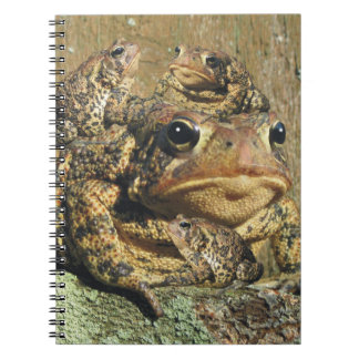 Toadly Awesome Toad Spiral Note Book