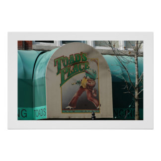 Toads Place Poster