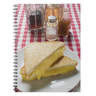 Toasted cheese sandwiches on plate, vinegar, notebooks