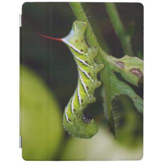 Tobacco Hornworm Caterpillar iPad Cover