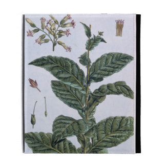 Tobacco plant, plate 7, from 'Collection Precieuse iPad Folio Cases