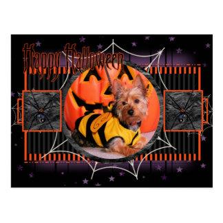 Tobey - Silky Terrier Postcard