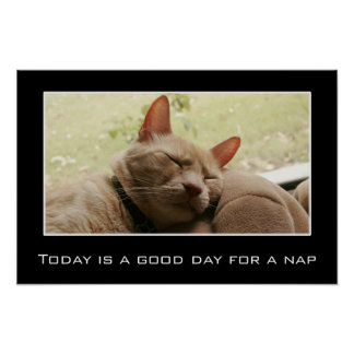 Today is a good day for a nap (L) Poster