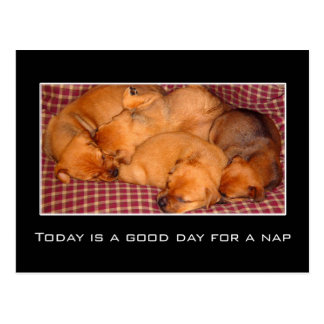 Today is a good day for a nap postcard