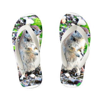 Toddler Ground Squirrel Flip Flops