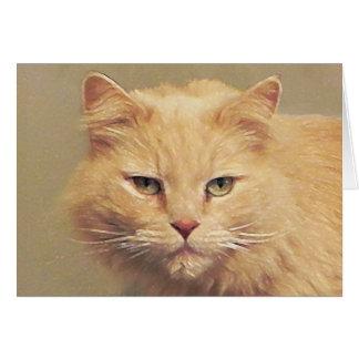 Tom Cat Get Well Soon Card