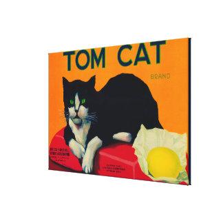 Tom Cat Lemon LabelOrosi, CA Gallery Wrapped Canvas