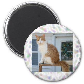 Tom the Cat 6 Cm Round Magnet