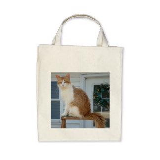 Tom the Cat Bag