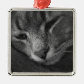 Tom - The Cat Ornaments