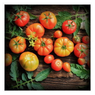 Tomato background poster