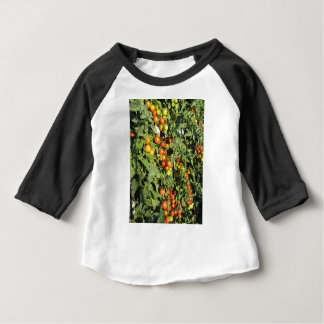 Tomato plants growing in the garden baby T-Shirt