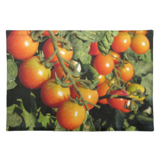 Tomato plants growing in the garden placemat