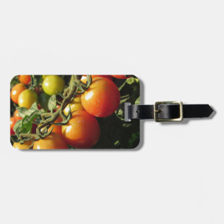 Tomato plants growing in the garden . Tuscany Luggage Tag
