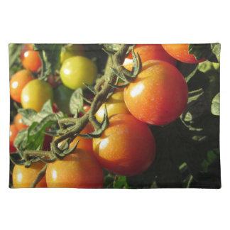 Tomato plants growing in the garden . Tuscany Placemat