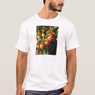 Tomato plants growing in the garden . Tuscany T-Shirt