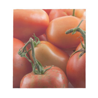 Tomato Stems Notepad