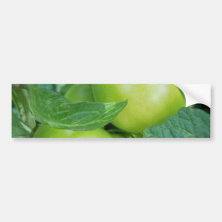 Tomatoes On The Vine Bumper Stickers