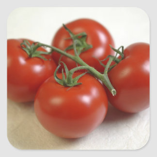 Tomatoes on the vine For use in USA only.) Square Sticker