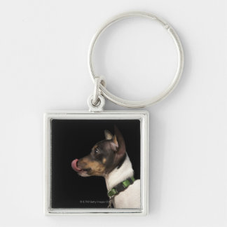 Tongue out of black and White Rat Terrier Key Ring