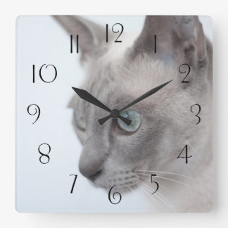 Tonkinese Cat Square Wall Clock
