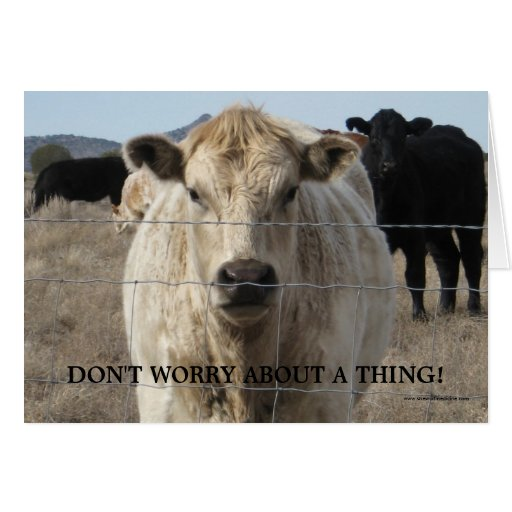 Tons of Luck Wishes - Cute Cow - Ranch or Farm Greeting Card