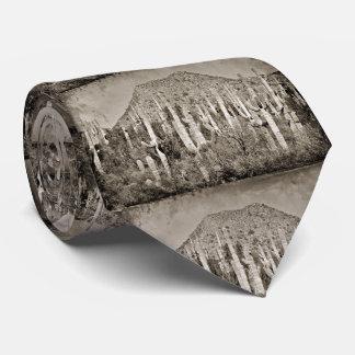 Tontos in Vintage Men's Tie