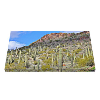 Tontos Saguaro Wall Canvas