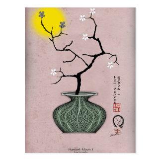 tony fernandes's a harvest moon 1 postcard