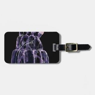tony fernandes's licorice jello rat luggage tag