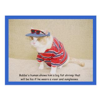 Too Cool Bubba Kitty Postcard