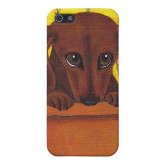 Too Cute Dachshund I iPhone 5 Cases