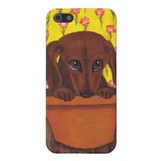 Too Cute Dachshund iPhone 5/5S Covers
