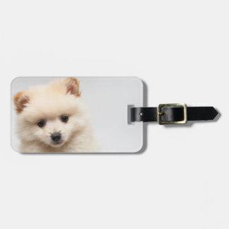 Too Cute Pomeranian Bag Tag