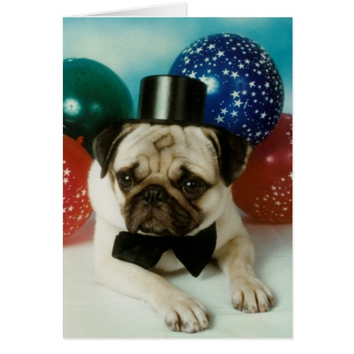 Top Hat Birthday Pug Card