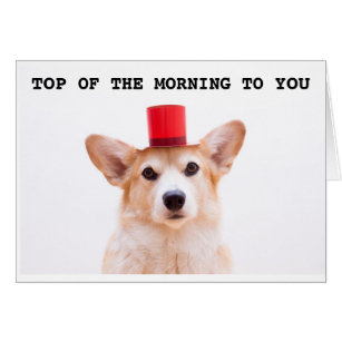 Top Morning Gifts On Zazzle Au