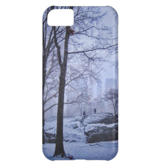 Top Of The Rock iPhone 5C Case