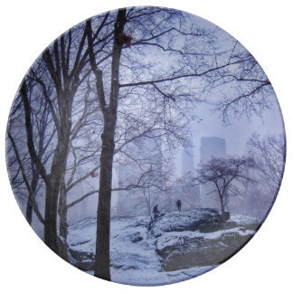 Top Of The Rock Porcelain Plates