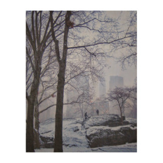 Top Of The Rock Wood Canvases