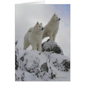 """""""Top Of The World"""" Greeting Card"""