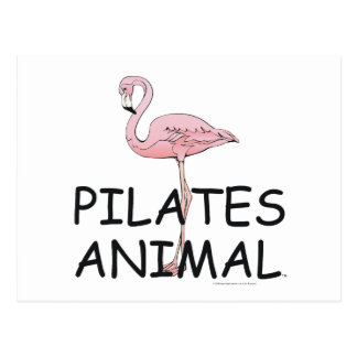 TOP Pilates Animal Postcard