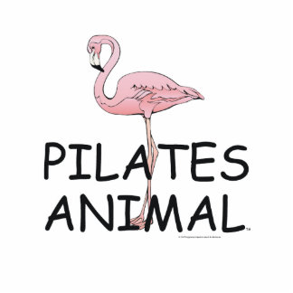 TOP Pilates Animal Standing Photo Sculpture