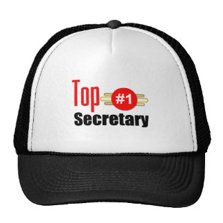 Top Secretary Mesh Hats