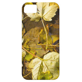 Top view of a wet autumn leaves barely there iPhone 5 case