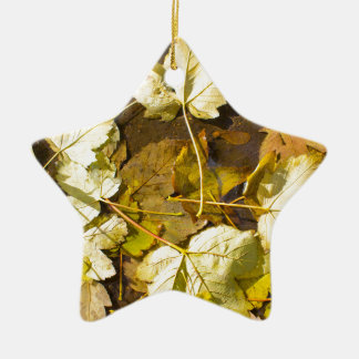 Top view of a wet autumn leaves ceramic star decoration