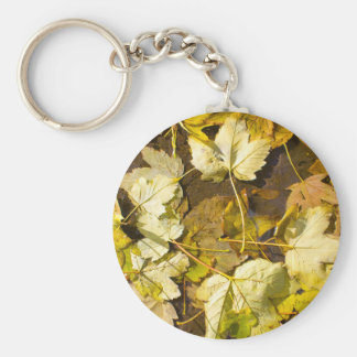 Top view of a wet autumn leaves key ring