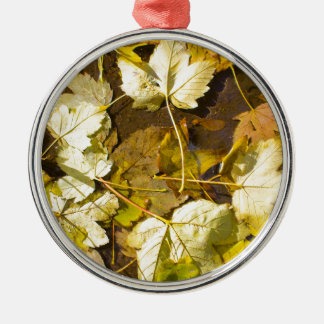 Top view of a wet autumn leaves Silver-Colored round decoration