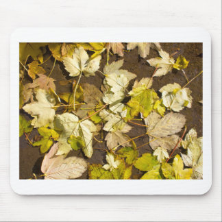 Top view of a wet autumn maple leaves mouse pad